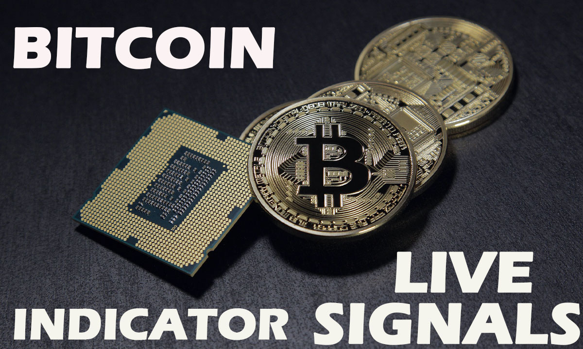 Bitcoin Forex Trading Signals Live Indicator Performance-1 Minute Trading Strategy